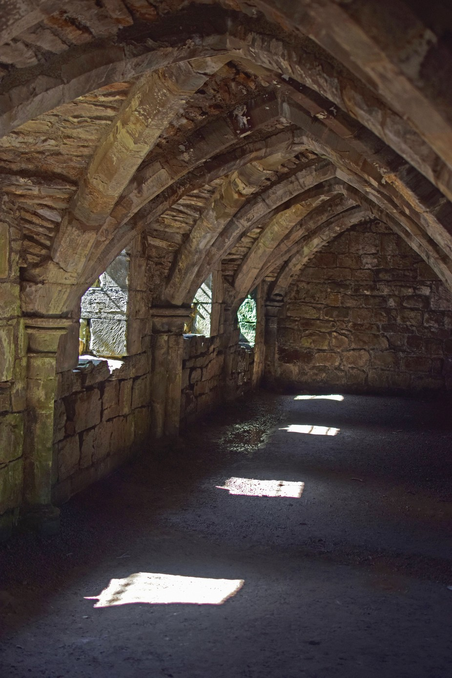 The Crypt, Finchale Priory