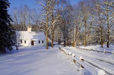 A Wintery Lane In Hampton, New Hampshire #1