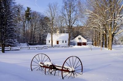 A Wintery Lane In Hampton, New Hampshire #3