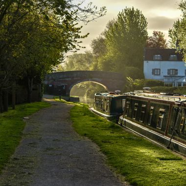Taken as the sun was rising at Sells Green, near Seend, Wiltshire, England.