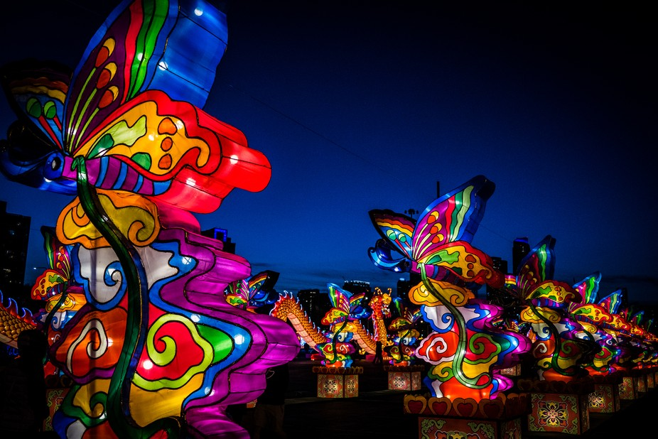 These pretty lanterns were spectacular and vibrant as the sun started falling in Chicago.
