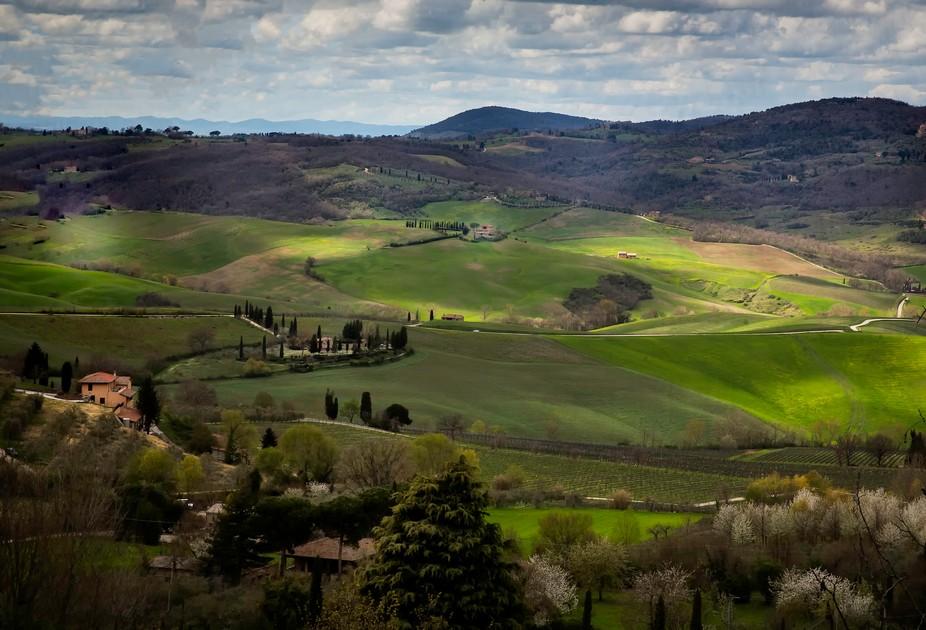 Tuscan Hills II