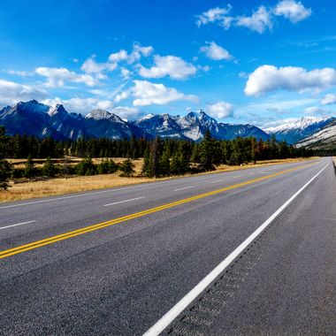 Highway 16 to Edmonton is one of the most scenic and there are usually elk to be seen