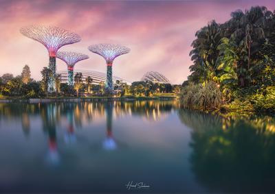 Singapore Futuristic