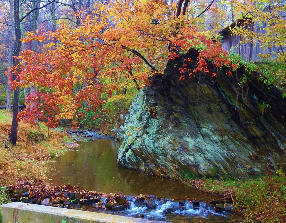fall scene with stream trees & huge rock that's near my house