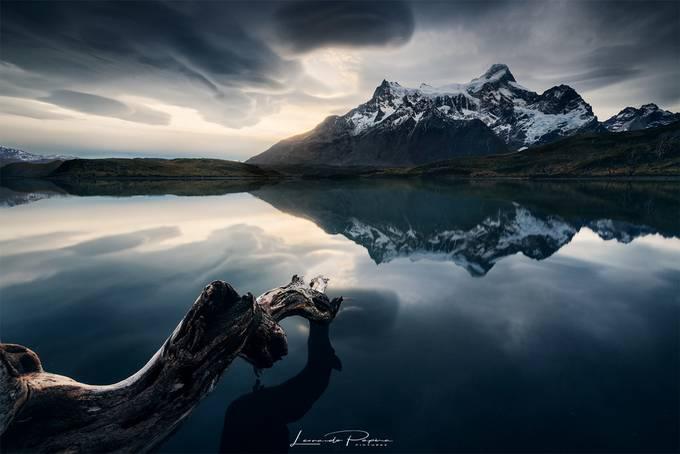 Nightmare's Genesis by leonardoguglielmopapra - The Natural Planet Photo Contest