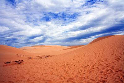 Oasis red desert of Vietnam