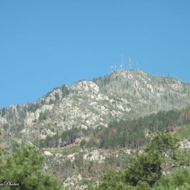 Heliograph Peak Mt Graham AZ after Frye Fire