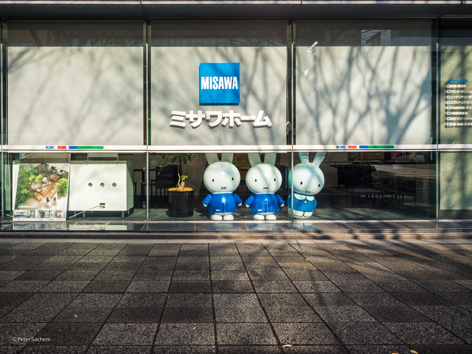 3 inflatable dolls of Miffy in a showroom window in Kyoto. They seem to enjoy the scenery...