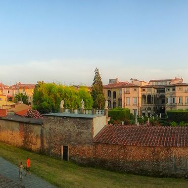 A walk along the wall in Lucca, Italy. Looking down onto the Phafner gardens.