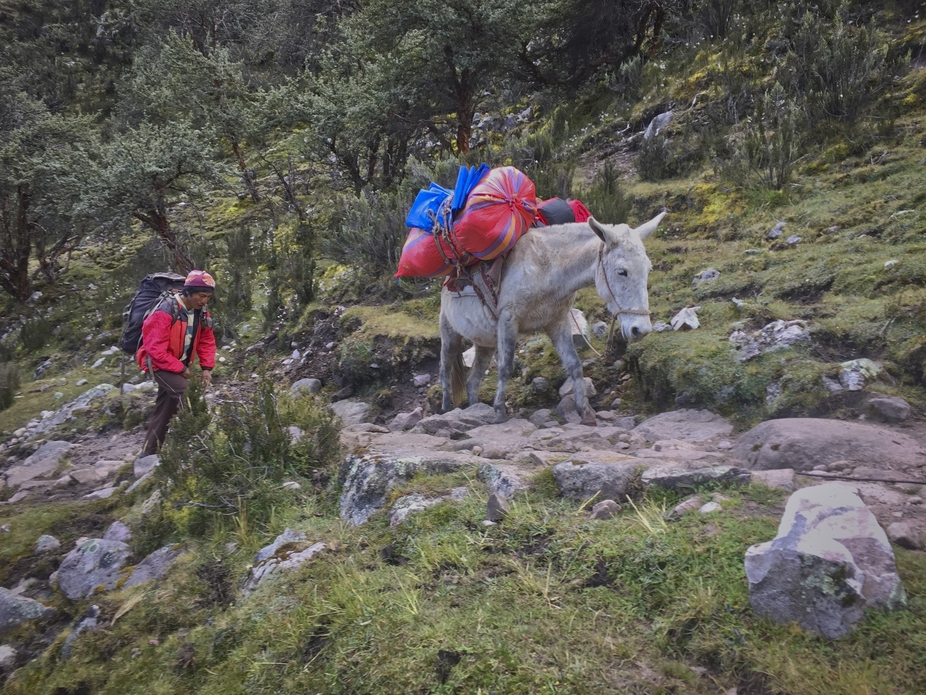 Horsemen with our gear heading to base camp in the Andes Mountains