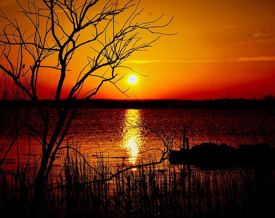 Backbay Sunset