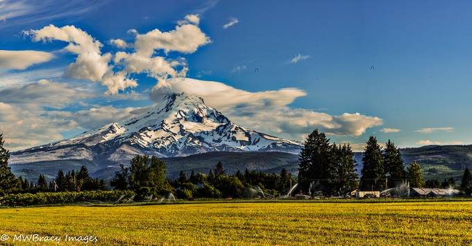 Freshly mowed hayfield provided a nice foreground for this shot os Mt. Hood near Parkdale, Oregon