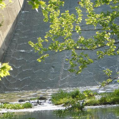 Ripples over the Dam