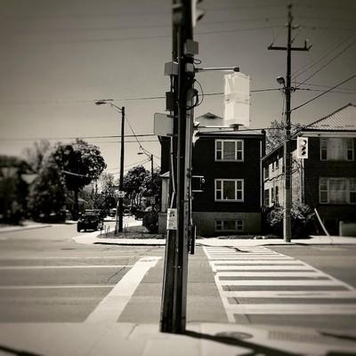 Weston Rd,, TorontO, ON