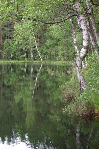 Devil's lake in Latvia