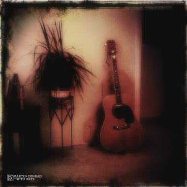 Guitar and Potted Plant on Stand