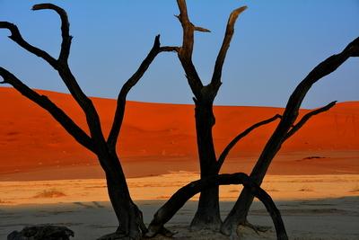 DSC_4312 Sand Dunes 40v2 Namibia 2016