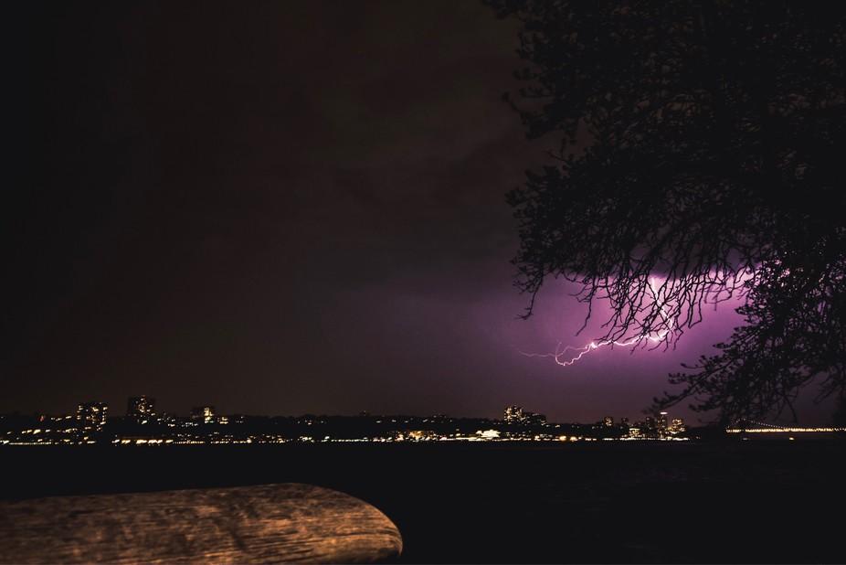 Lightning Through A Tree Across The Hudson River
