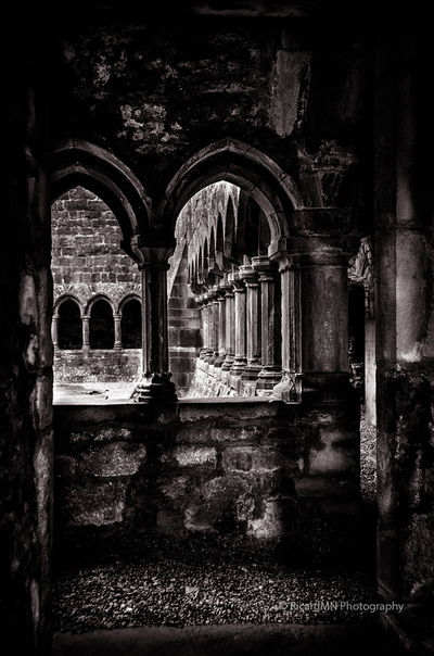 Sligo Abbey Interior BW
