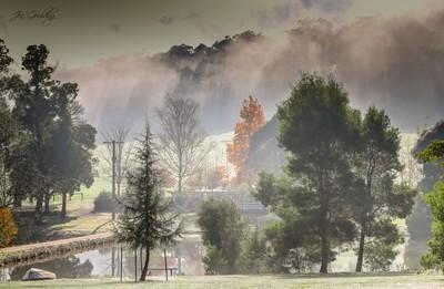 View Through The Fog