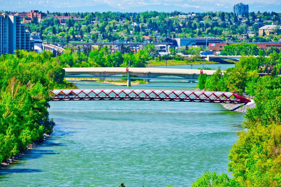 A closer view of the Peace Bridge and the Bow River from McHugh Bluff.