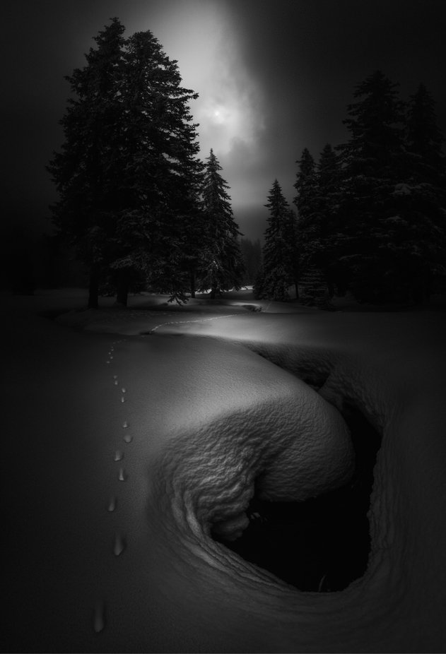 by swqaz - Our World In Black And White Photo Contest