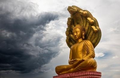 Buddha Facing the Storm.