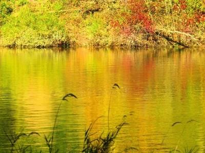 Champoeg State Park Oregon