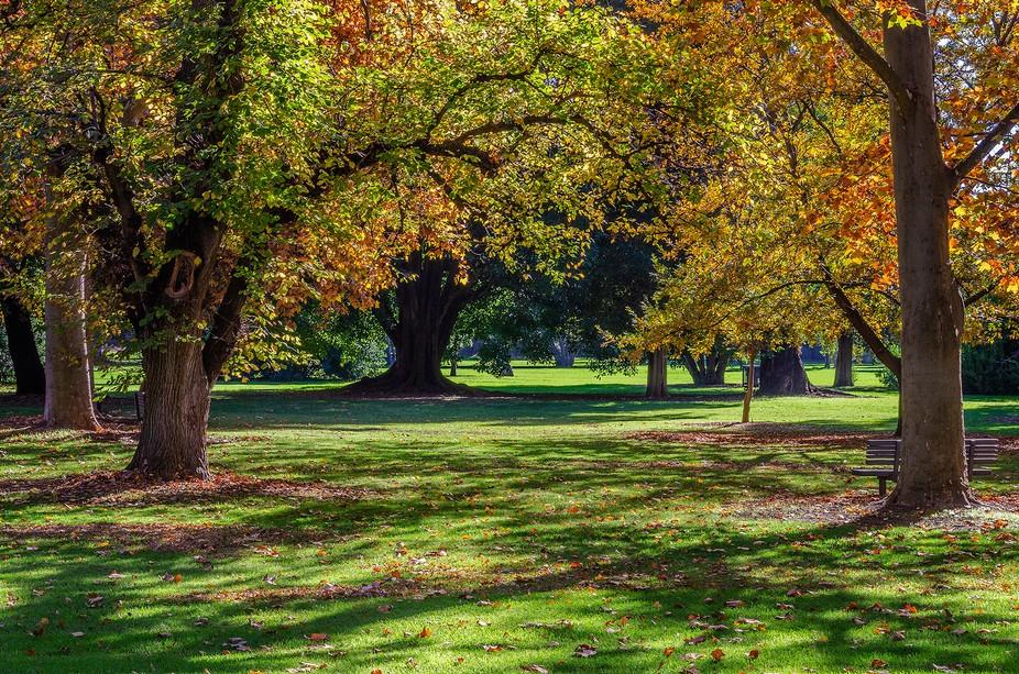 Autumn Adelaide