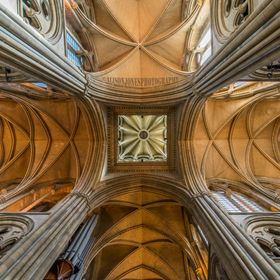 Truro is not one of the older cathedrals, it is however a very light and airy space. The contrast between natural and artifical light gives the s...
