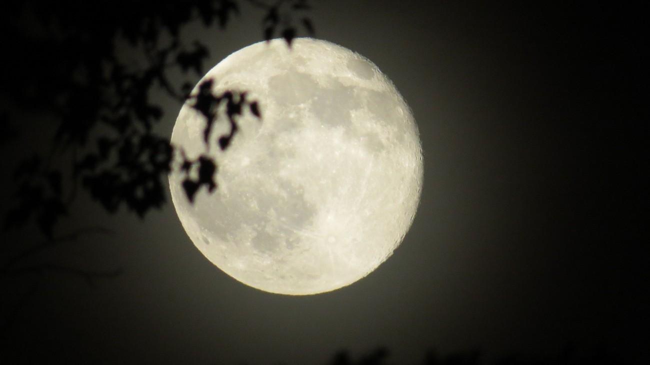 SiSter Moon 2