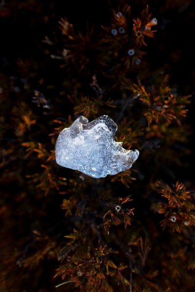 Ice Gem