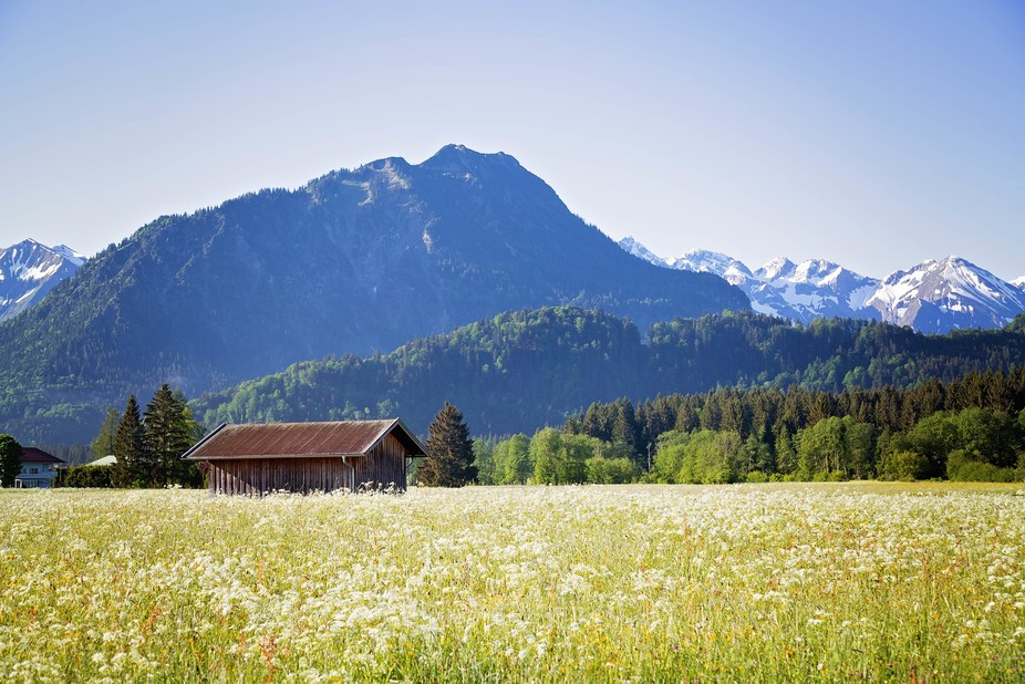 Just a 2 minute walk from my apartment in Oberstdorf there is a trail system that travels through...