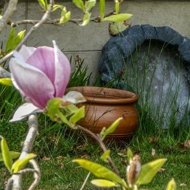 in One's garden ………..