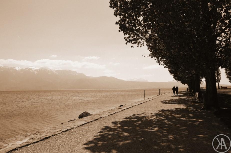 Sepia lake