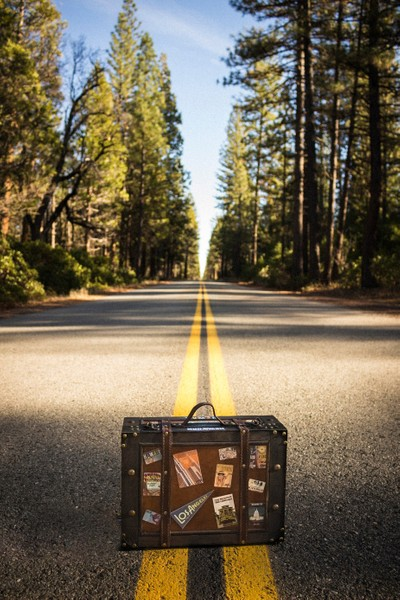 The Traveling Suitcase: Roadtrip