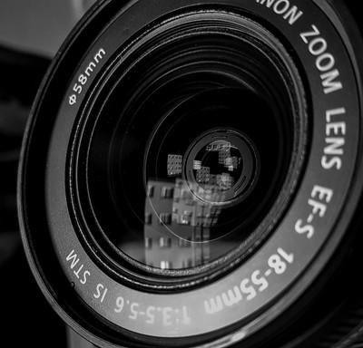 The World Inside My Lens