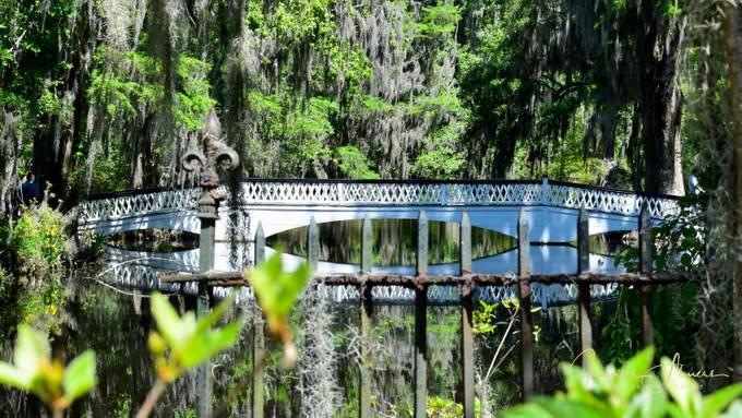 Long Bridge Viewed Behind Wrought Iron Fence