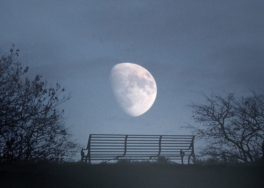 Bench Where Lovers Gazed At The Moon