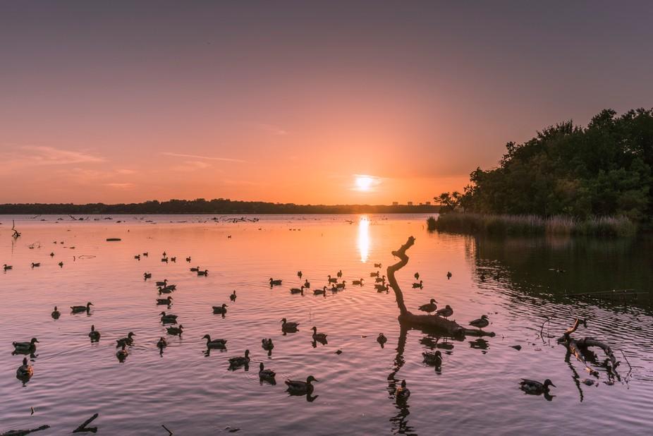 White Rock Lake, Dallas TX