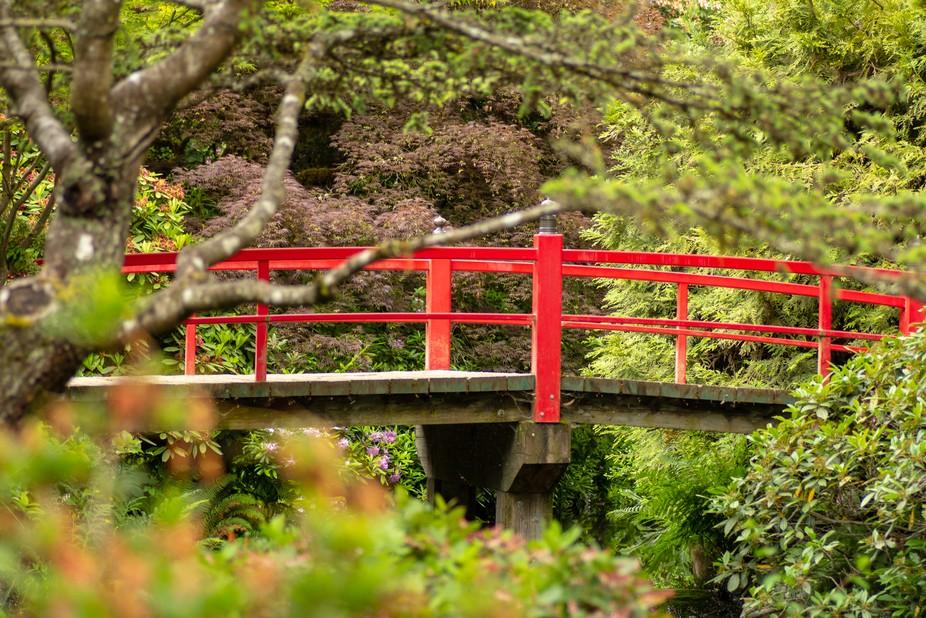 Kubota Garden, Seattle Wa