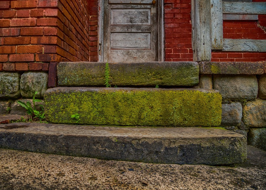 Abandoned house door and steps