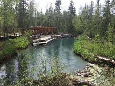 Spring at Liard Hot Springs