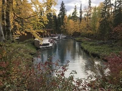 Fall at Liard