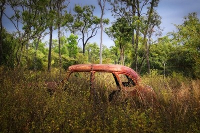 Rusted Nature