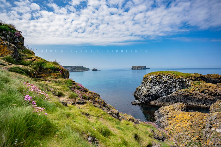 Carrick-a-rede Island, Northern Ireland