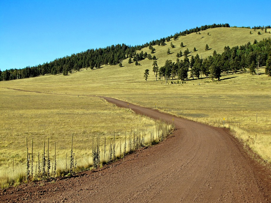 Country Road in the White Mountains, Arizona  US