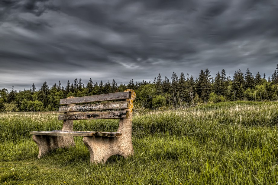 Taken at PEI National Park (Greenwich), taken on the way to the floating boardwalk (an amazing si...