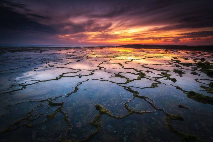 Seanapse II by ander_alegria - The Natural Planet Photo Contest